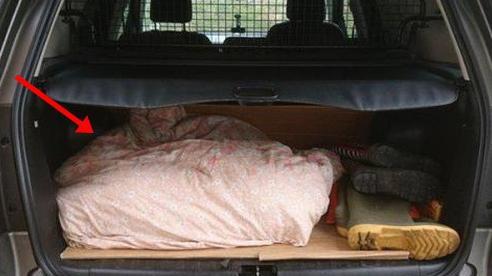 Đi vào vườn cắt cỏ hơn 1 tiếng, người đàn ông bị cảnh sát tìm đến nhà vì tình nghi giấu thi thể trong cốp xe, tất cả chỉ vì tình yêu chó mà ra