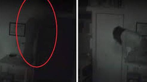 Lắp đặt camera vì thường xuyên bị mất đồ, chủ nhà kinh hoàng phát hiện bóng người bí ẩn bò ra từ tủ nhà mình