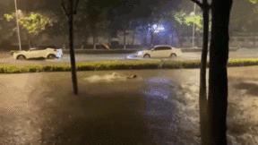 Mưa lớn gây ngập sâu, người đàn ông 'tranh thủ tập bơi' giữa đường