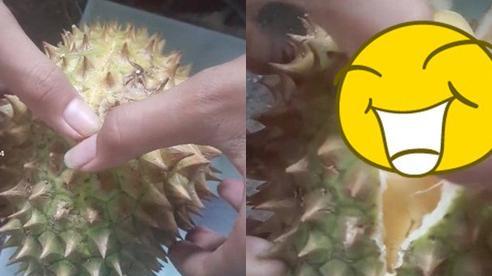 Thử mua giống sầu riêng bé tẹo về ăn, thanh niên ngã ngửa khi vừa tách múi đầu tiên và nhìn thấy phần cơm bên trong