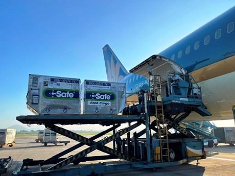 Vietnam Airlines vận chuyển gần 1 triệu liều vaccine vào TP.HCM