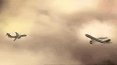 Thảm kịch kinh hoàng, hai máy bay tông thẳng vào nhau giữa trời