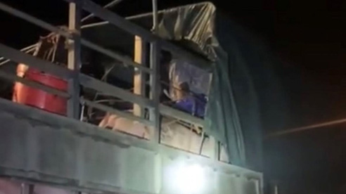ĐỪNG LỠ ngày 23/6: Gần 20 người trốn trong xe chở lợn để vượt chốt kiểm soát tại Quảng Ninh; VFF dồn sức đưa bóng đá Việt Nam giành vé dự World Cup 2023