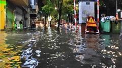 Sau cơn mưa lớn, nhiều cây cối đổ rạp, 'đặc sản ngập' lên ngôi khắp đường phố Hà Nội