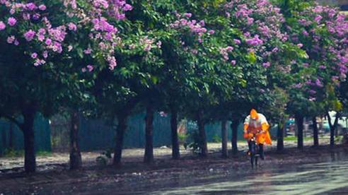 'Tin tốt' về đợt nắng nóng gay gắt kéo dài nhiều ngày tại Hà Nội và các tỉnh miền Bắc!