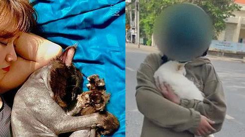 Hari Won bị chỉ trích gay gắt vì đăng status giữa ồn ào cô gái đưa mèo đi khám thú y, phải lên tiếng ngay và luôn!