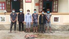 Nhóm thanh niên trộm bò, lấy 4 đùi: 'Chưa cho vào nồi'