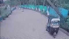 Cây đổ khiến xe bẹp dúm, tài xế thoát chết trong gang tấc