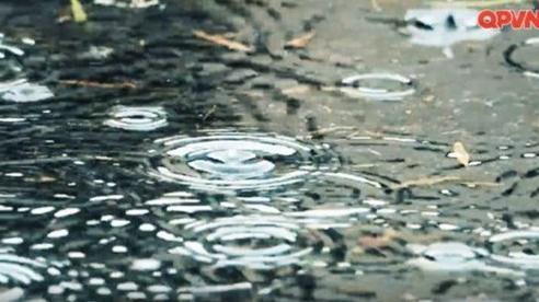 Chuyện của mưa
