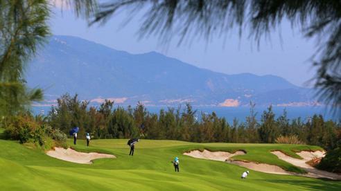 Tạm đình chỉ công tác Cục phó Cục thuế Bình Định chơi golf 'lậu' rồi thành F1