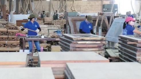Cơ sở sản xuất, kinh doanh tại huyện 'vùng xanh' Hà Nội hoạt động trở lại