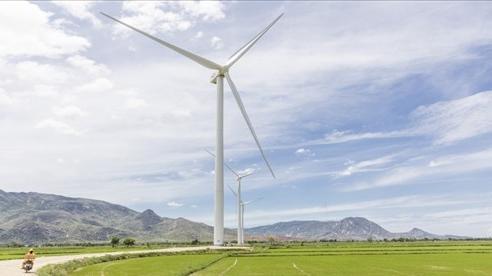 Các dự án điện gió ở Việt Nam gặp rủi ro nếu không được nới thời hạn giá ưu đãi