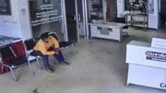 Rắn khủng bò vào đồn cảnh sát, nhảy chồm lên tấn công người ở Thái Lan