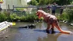 Thanh niên rảnh dỗi quá đi cà khịa cá sấu