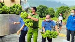 Tấm lòng của người dân Tuyên Quang hướng về Hà Nội