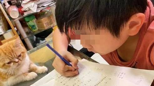 Dân mạng cười điên đảo trước bài văn tả gia đình không khác gì... sở thú của cậu bé 10 tuổi