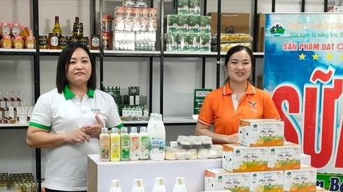 'Chợ đêm trên mây' thu hút người tiêu dùng vì 'mua lẻ còn rẻ hơn mua buôn'