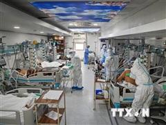 Khoảng 115.000 nhân viên y tế trên toàn cầu tử vong do COVID-19