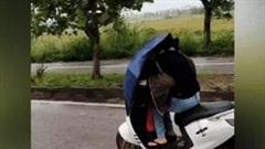 Cô gái chạy xe máy dùng ô chắn mưa gió theo cách 'bất chấp tất cả'