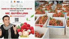 19h hôm nay (14/6), nghệ sĩ Quyền Linh livestream hỗ trợ tiêu thụ vải thiều Bắc Giang
