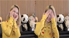 ĐỘC QUYỀN: Dương Hoàng Yến hát ca khúc mới, nhắc Hậu Hoàng - mũi trưởng Long