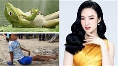 Angela Phương Trinh bị chỉ trích khi chia sẻ một câu chuyện về loài nhái và luật nhân quả