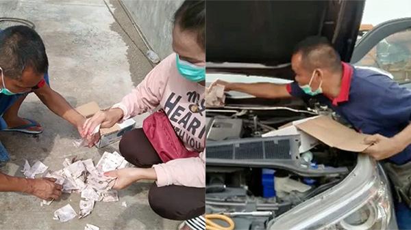 Âm thầm giấu quỹ đen hơn 30 triệu đồng trong ôtô, 6 tháng sau anh chồng mở ra 'sốc nặng' vì chuột gặm hết sạch